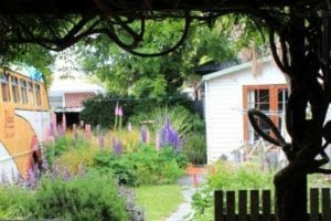 Garden at Chester St Backpackers Christchurch
